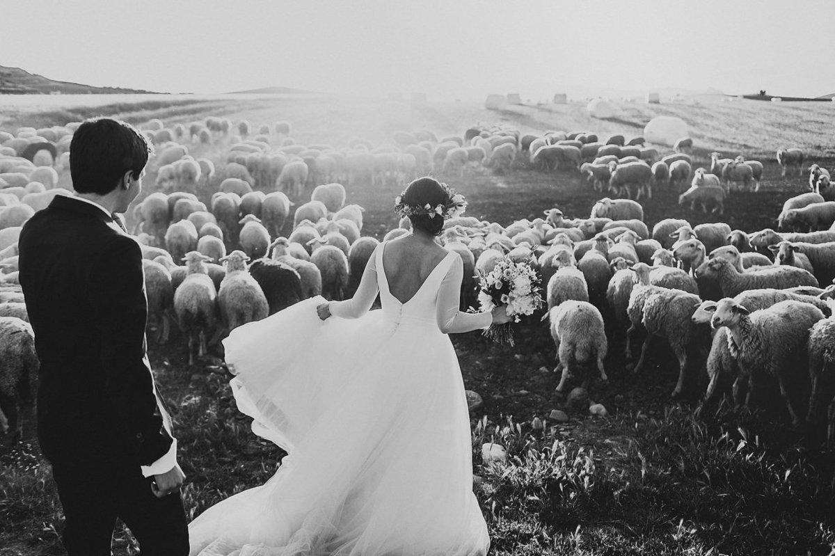 25 fotos de casamento dignas de prêmio que farão você sonhar por um momento 10