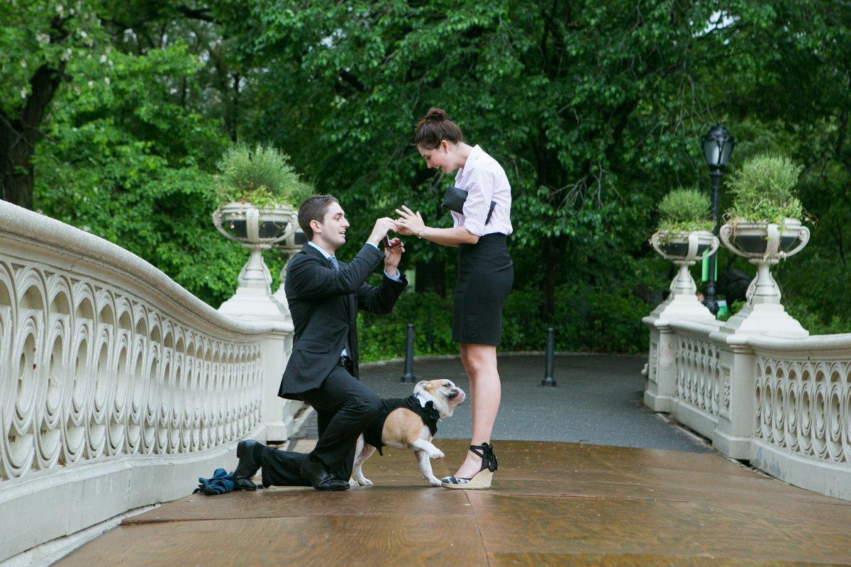 Esse cara secretamente fotografa pedidos de casamento em Nova York 10