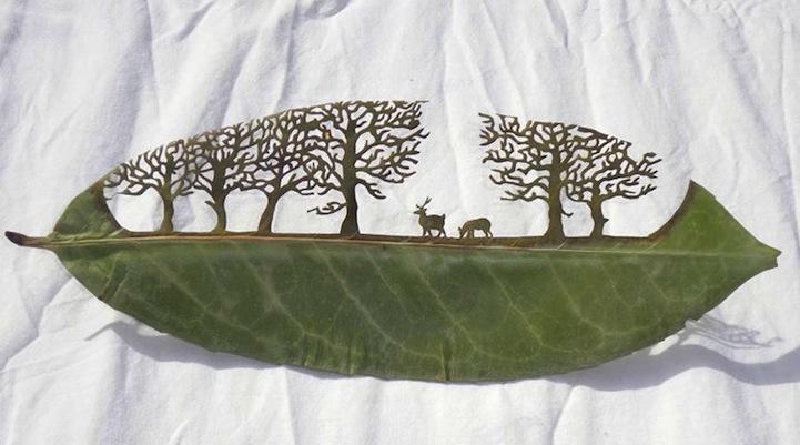 Arte em folhas de árvores 01