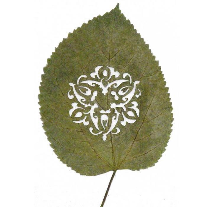 Arte em folhas de árvores 06