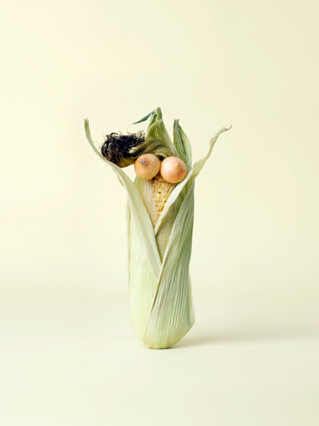 Arte com vegetais 02