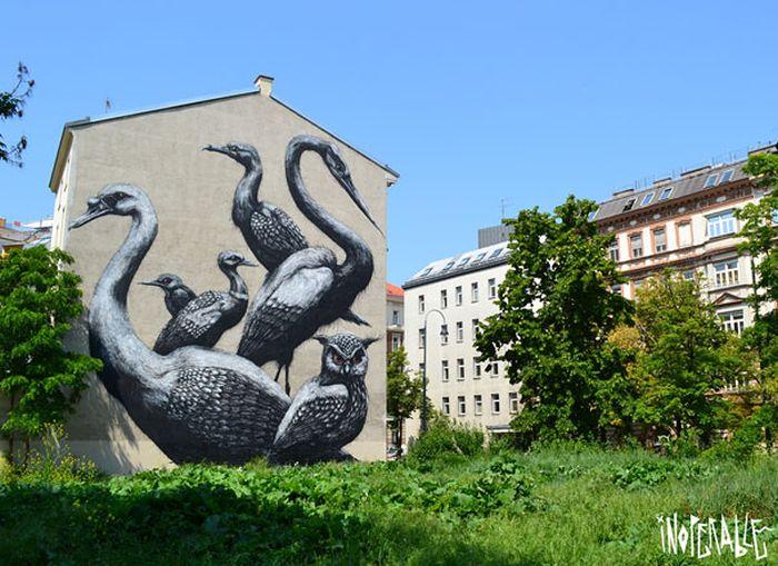 Belos murais urbanos 15