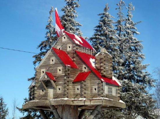 As incríveis casas de pássaros de John Looser 04