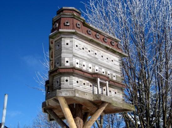 As incríveis casas de pássaros de John Looser 08