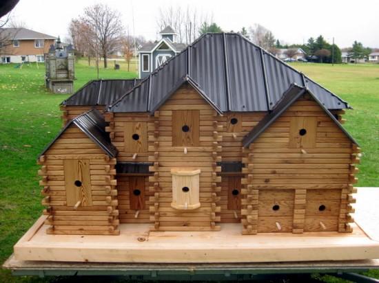 As incríveis casas de pássaros de John Looser 10