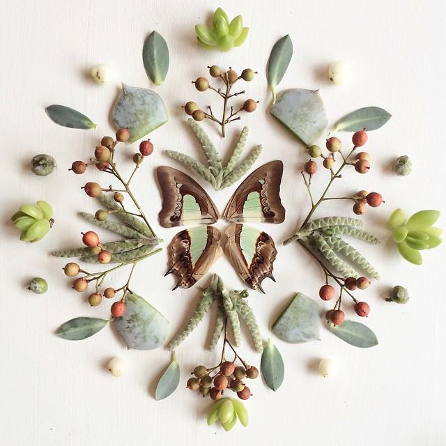 Artista cria belas colagens com flores e plantas 03
