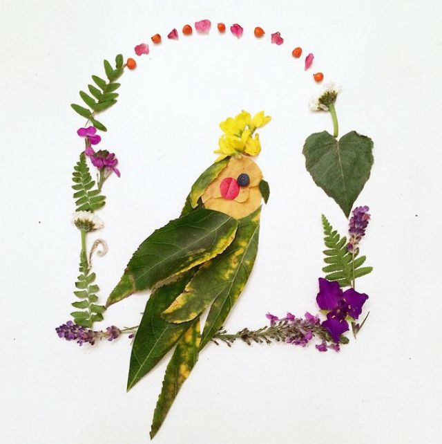 Artista cria belas colagens com flores e plantas 08