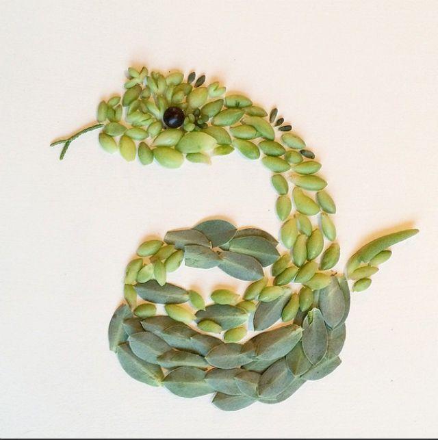 Artista cria belas colagens com flores e plantas 10