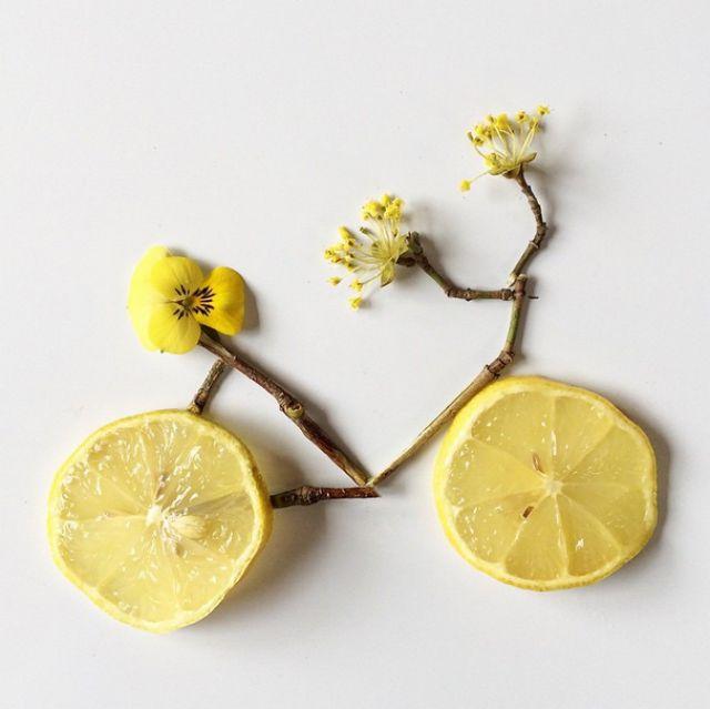 Artista cria belas colagens com flores e plantas 13