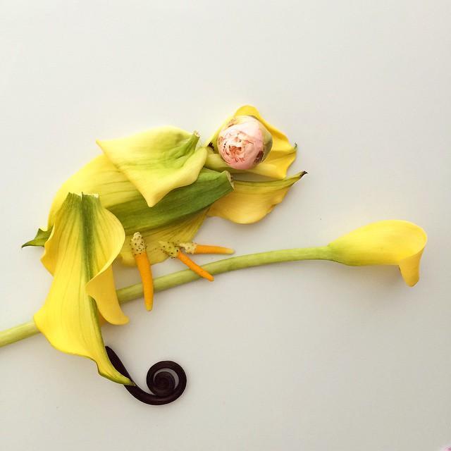 Artista cria belas colagens com flores e plantas 19