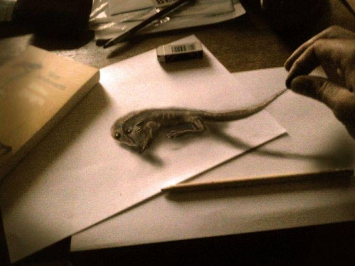 Desenhos 3D anamórficos de Ramon Bruin 07