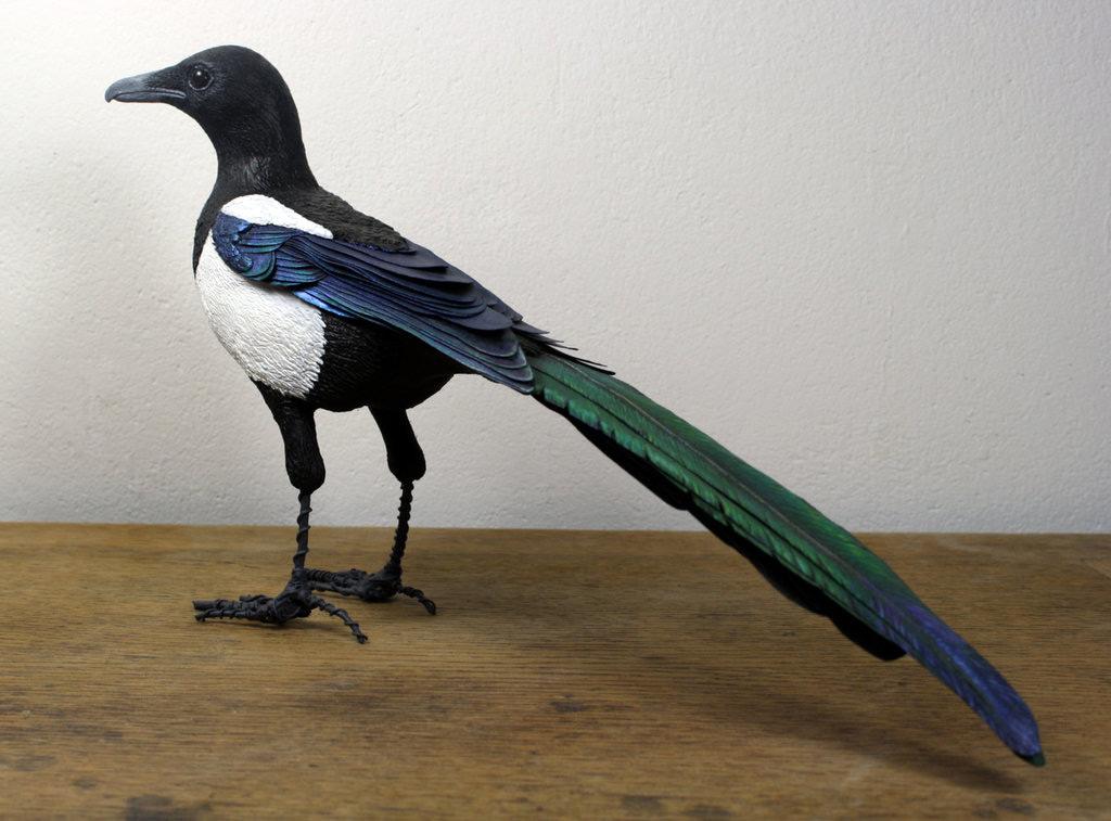 Pássaros artesanais feitos com madeira e papel por Zack Mclaughlin 03