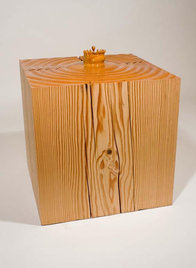 As surpreendentes esculturas de madeira de Dan Webb 30