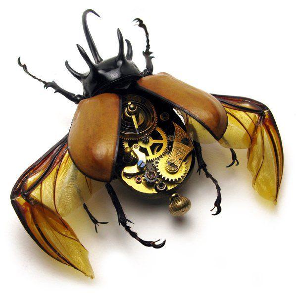 Os insetos mecânicos de Mike Libby 11