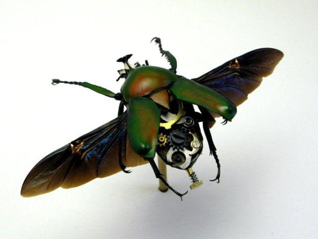 Os insetos mecânicos de Mike Libby 12