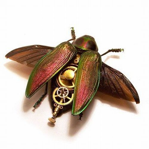 Os insetos mecânicos de Mike Libby 13