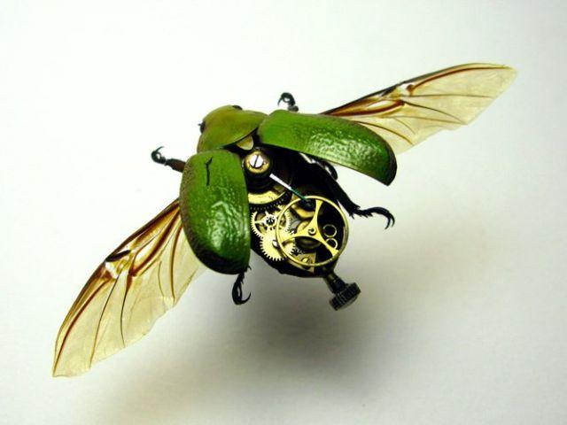 Os insetos mecânicos de Mike Libby 14