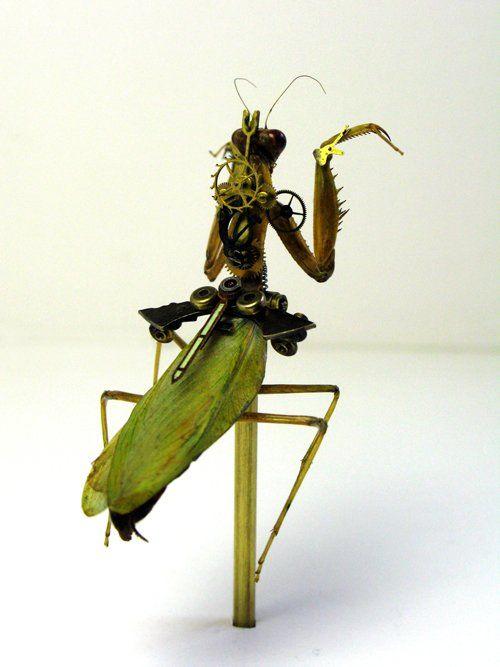 Os insetos mecânicos de Mike Libby 15