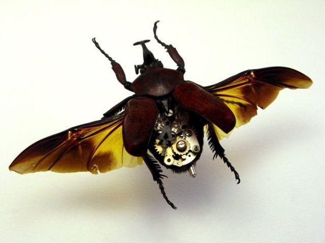 Os insetos mecânicos de Mike Libby 19