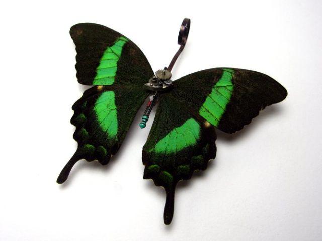 Os insetos mecânicos de Mike Libby 20