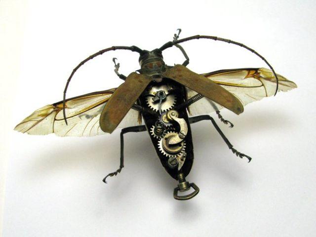 Os insetos mecânicos de Mike Libby 22