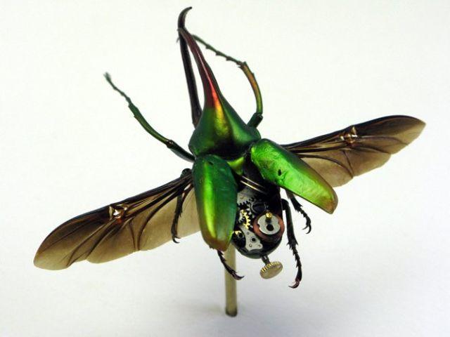 Os insetos mecânicos de Mike Libby 23