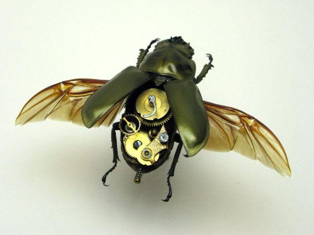Os insetos mecânicos de Mike Libby 25