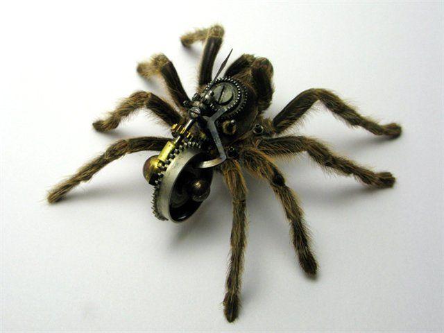 Os insetos mecânicos de Mike Libby 26