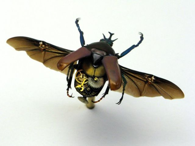 Os insetos mecânicos de Mike Libby 27
