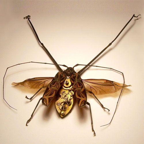 Os insetos mecânicos de Mike Libby 28