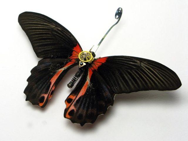 Os insetos mecânicos de Mike Libby 29