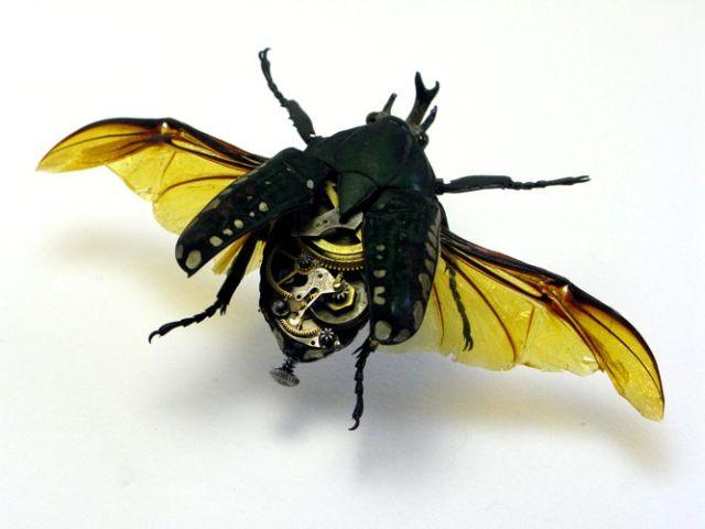 Os insetos mecânicos de Mike Libby 30