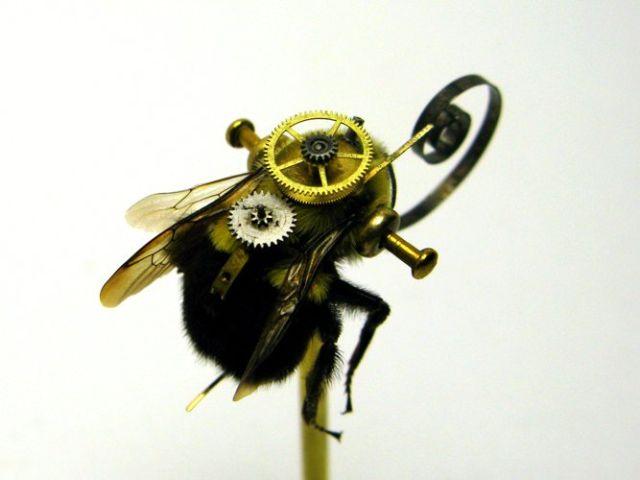 Os insetos mecânicos de Mike Libby 31