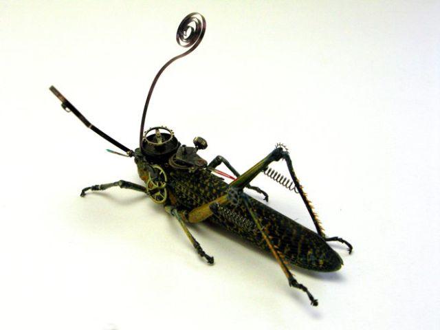 Os insetos mecânicos de Mike Libby 32