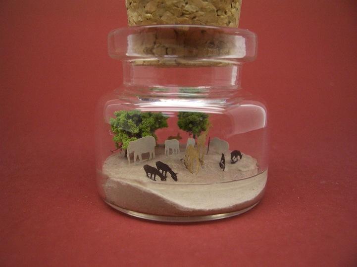 O mundo em miniatura dentro de uma garrafinha 13