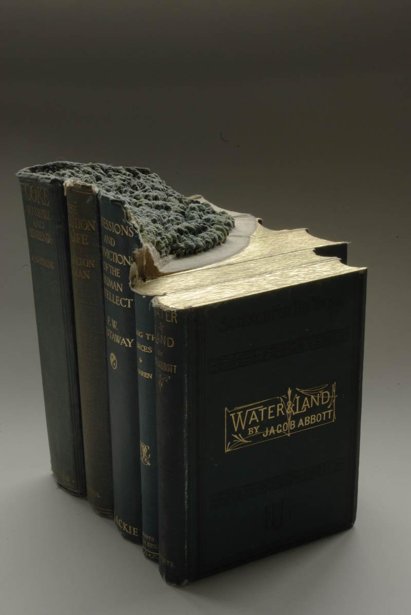 Paisagens incríveis esculpidas em livros 09