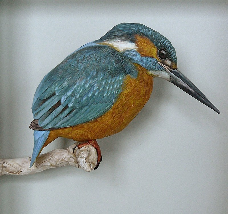 Artista incríveis pássaros realistas em papercraft 03