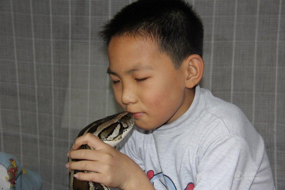 Garoto chinês vive e dorme com um Píton enorme há 13 Anos 02