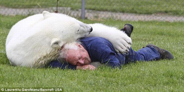 Mark e o urso polar Agee, uma amizade invejável 02