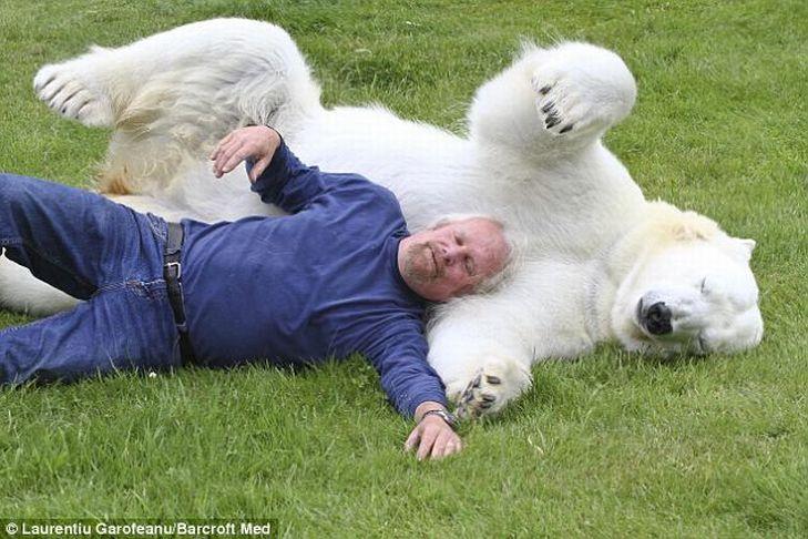 Mark e o urso polar Agee, uma amizade invejável 04