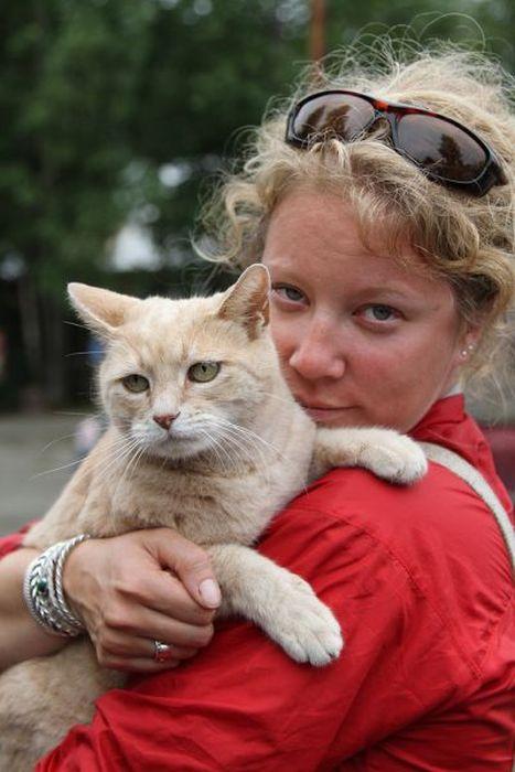 O prefeito da cidade de Talkeetna, no Alasca, é um gatinho 16