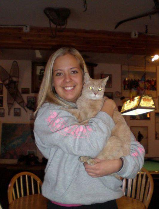 O prefeito da cidade de Talkeetna, no Alasca, é um gatinho 32