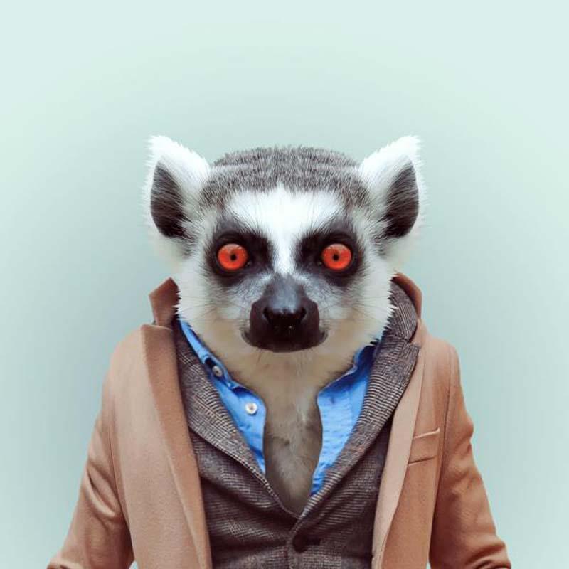 Engraçados retratos de animais vestidos como seres humanos 01