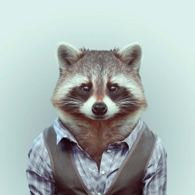 Engraçados retratos de animais vestidos como seres humanos 05