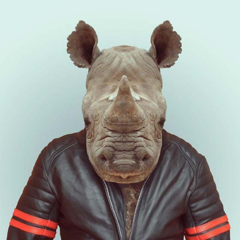 Engraçados retratos de animais vestidos como seres humanos 07