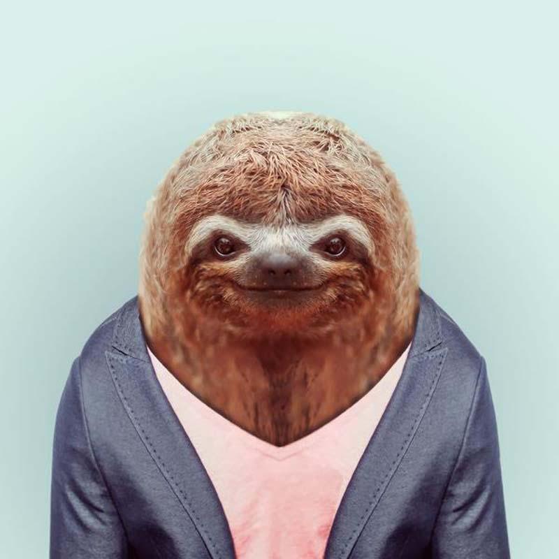 Engraçados retratos de animais vestidos como seres humanos 10