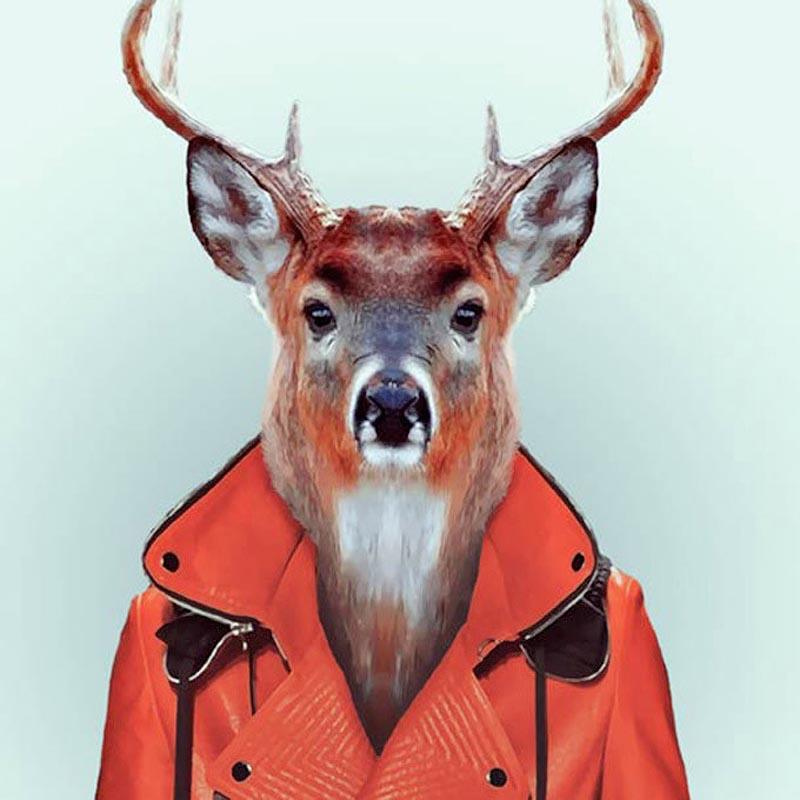 Engraçados retratos de animais vestidos como seres humanos 16