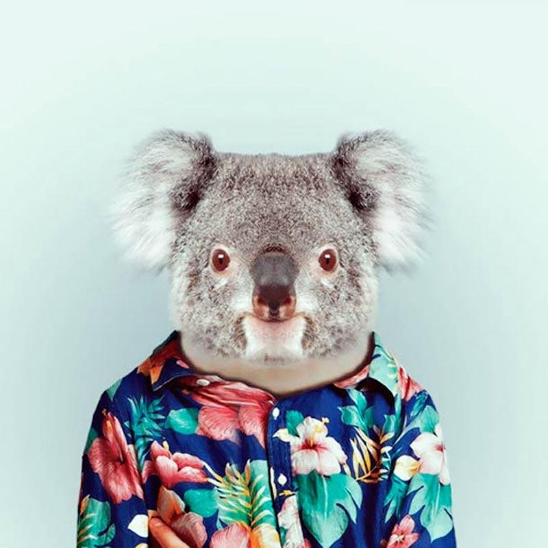 Engraçados retratos de animais vestidos como seres humanos 19