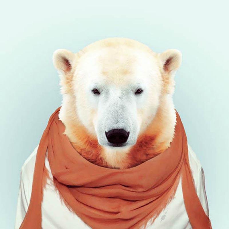 Engraçados retratos de animais vestidos como seres humanos 20
