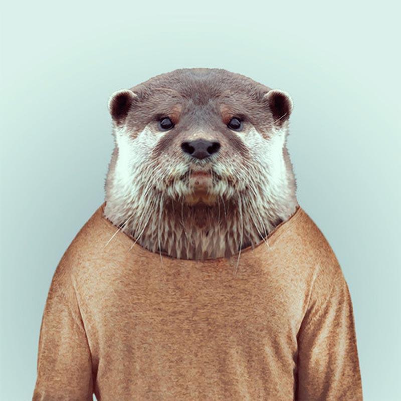 Engraçados retratos de animais vestidos como seres humanos 24